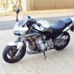 Yamaha Fazer 1000 Profile